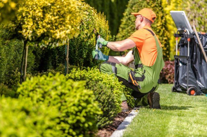 Why Garden Maintenance Makes Total Sense